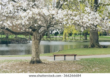 spring in yale university, USA. - stock photo