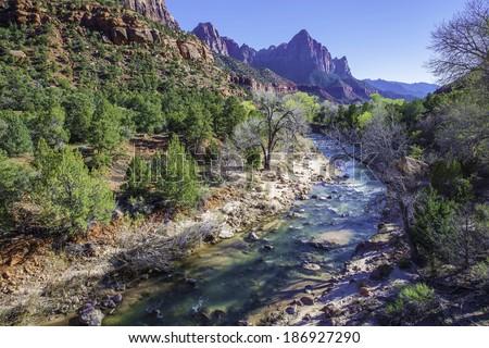 Spring in Zion National Park. Virgin River. Utah, United States. - stock photo