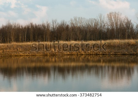 Spring is coming - stock photo