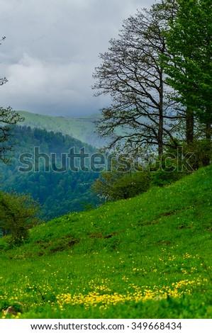 Spring landscape, Armenia - stock photo