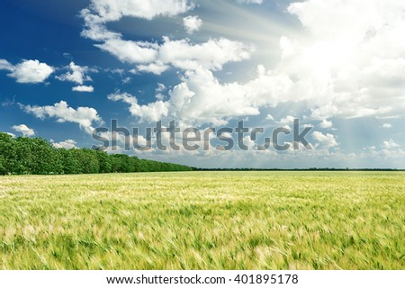 spring landscape, green field and blue cloudy sky - stock photo