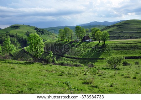 Spring landscape in the mountains