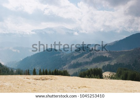 Spring landscape in the mountains. Cloudy weather