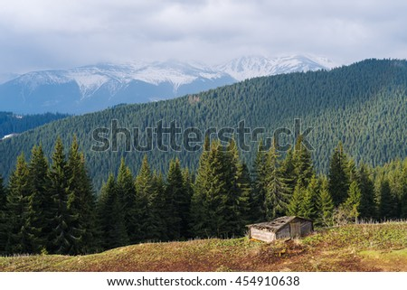 Spring landscape in the mountains. Sunny day. Fir forest on the slopes. Last snow on the mountain tops. Carpathians, Ukraine, Europe - stock photo