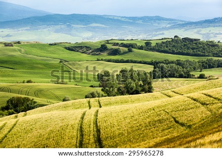 Spring landscape of fields Tuscany, Italy, Europe