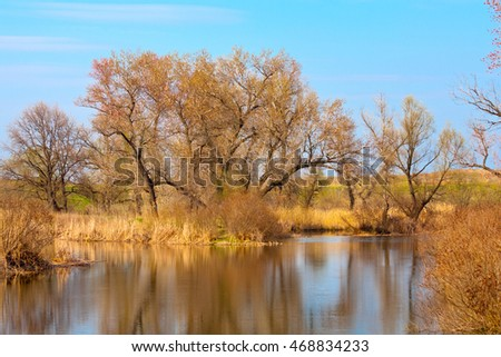 Spring landscape on lake with leafless tress