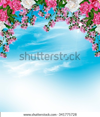 Spring landscape. Orchard. flowering branch - stock photo