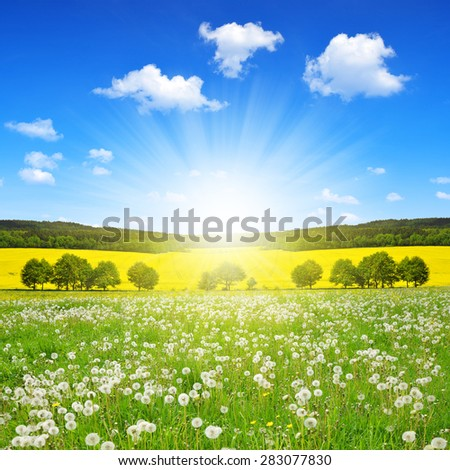 Spring landscape with dandelions on the meadow - Czech Republic - stock photo