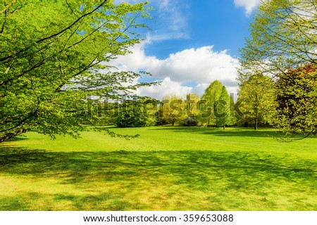 Spring landscape with fresh leaves and green grass - stock photo