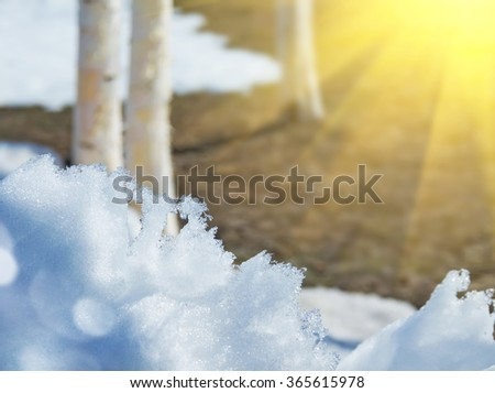 Spring landscape with melting snow and thawed in the sun - stock photo
