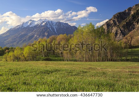 Spring landscape with Mount Timpanogos, Utah, USA.