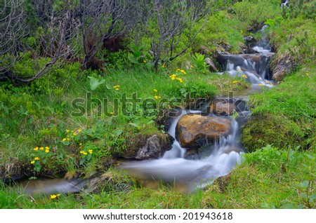 Spring landscape with mountain river  - stock photo