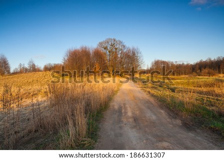 spring landscape with rural road