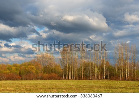 Spring landscape with stormy ominous sky and forest in fresh foliage.