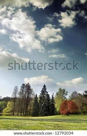Spring landscape with trees and stormy clouds - stock photo
