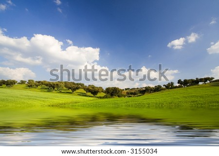 spring landscape with water reflexion