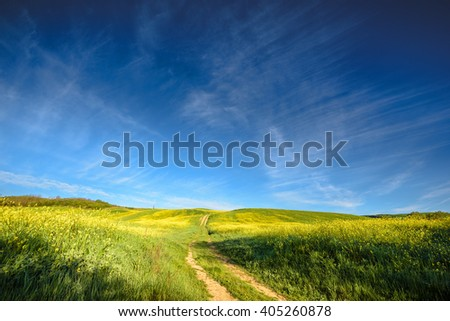 Spring landscape with yellow rape against the blue sky. - stock photo