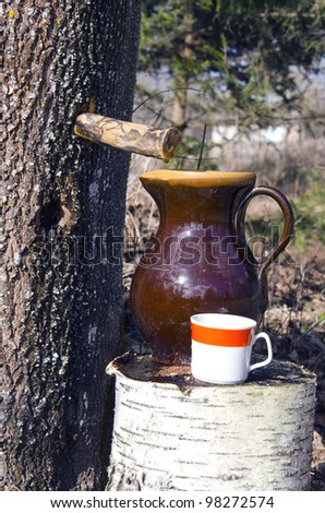 spring maple sap and brown clay jug - stock photo