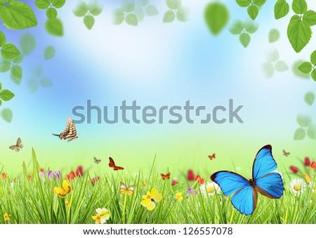 Spring meadow - stock photo