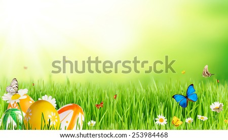 Spring meadow with Easter eggs and butterflies