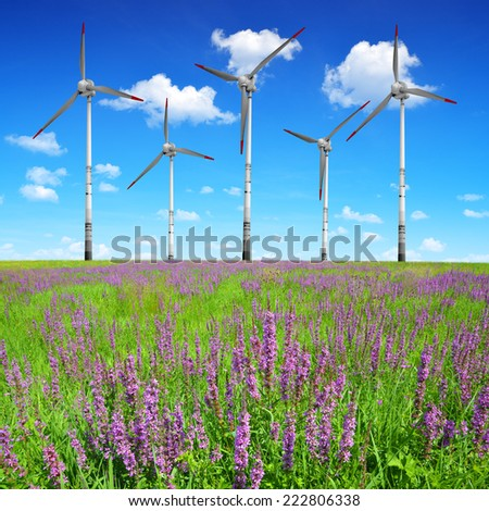 Spring meadow with wind turbines  - stock photo