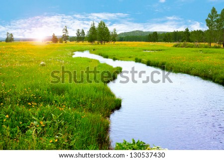 spring meadow with yellow flowers over sunny sky - stock photo