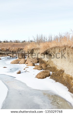 Spring melt of snow and ice increases the force of running water, eroding a cut into the bank along Fish Creek, Calgary, Alberta, Canada. - stock photo