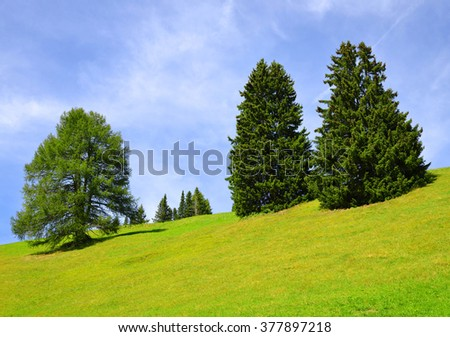 Spring mountain meadow with trees in Swiss Alps. - stock photo