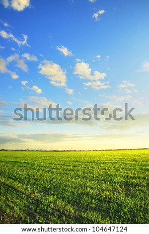 Spring, nature or agriculture concept: Sunrise over a newly planted cereal field beautiful, dramatic HDR rendering.