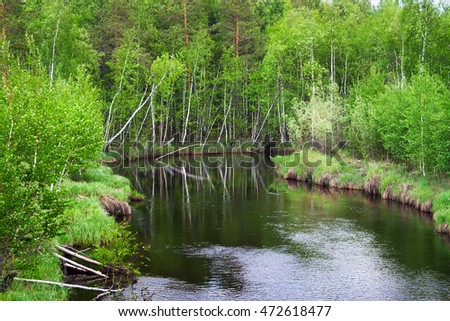 Spring on the small taiga river