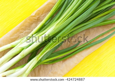 Spring onion on the yellow background