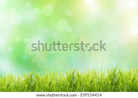 Spring or summer abstract nature background with grass field - stock photo
