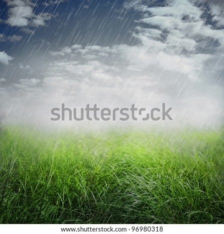 Spring or summer abstract nature background with grass in the meadow and rain in the back - stock photo