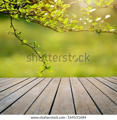 Spring or summer background Empty table for photomontage - stock photo