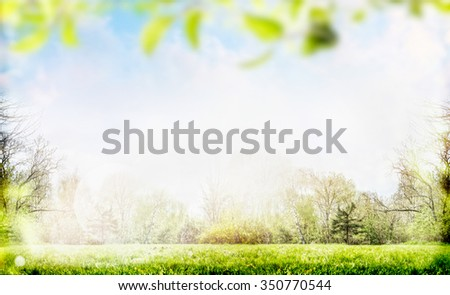 Spring or summer nature background with foliage,trees and lawn in garden or park - stock photo