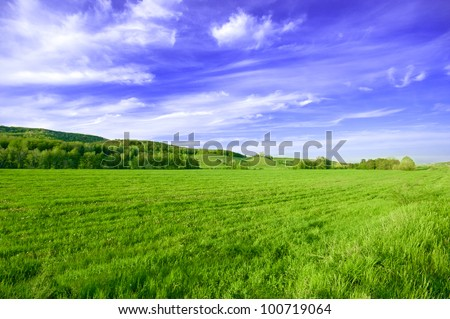 Spring or summer sunny day landscape - stock photo