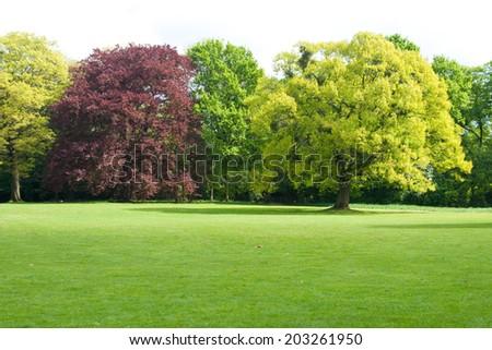 Spring park in Dusseldorf, Germany - stock photo