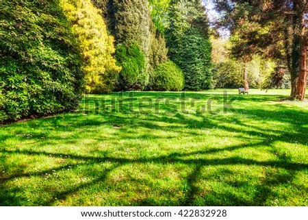 Spring park with green lawn, trees and tree shadow. Springtime landscape background. Beauty in nature - stock photo