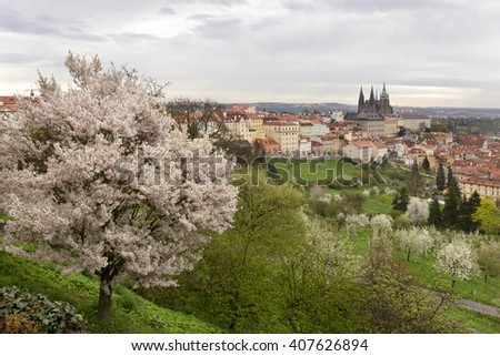 Spring Prague City with gothic Castle and the green Nature and flowering Trees, Czech Republic