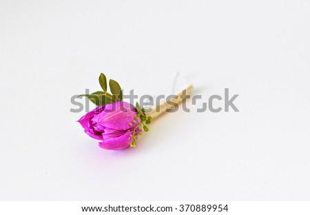 Spring purple tulip buttonhole for groom  - stock photo