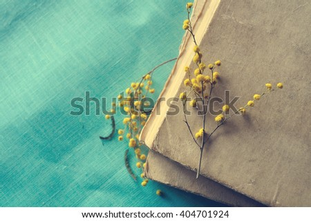 Spring retro still life - stack of old worn book with small mimosa branches.   Dark vintage filter processing. Selective focus at the mimosa lying on the hardcover. - stock photo