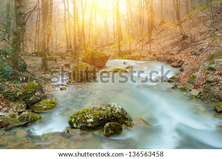 spring river by a sunny day - stock photo