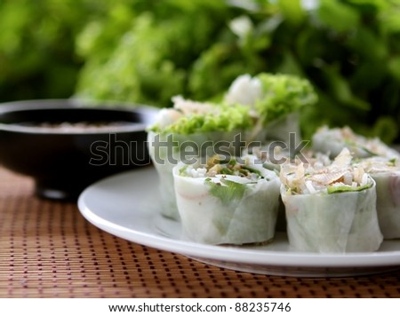 spring rolls with vegetable - stock photo