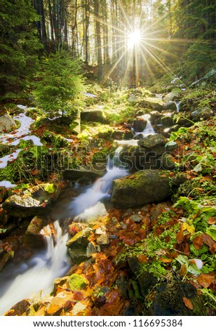 Spring running through forest with Sun beams behind trees - stock photo