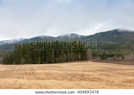 Spring rural Norwegian landscape with dry field, fog and clouds - stock photo