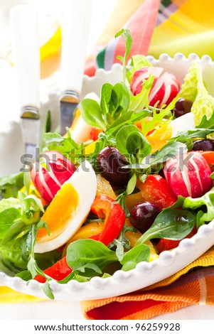 spring salad with grilled pepper,radish,olive and egg - stock photo