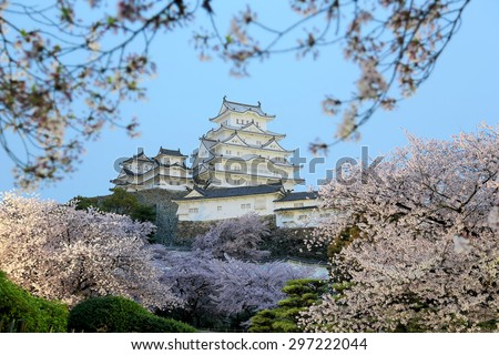 Spring scenery of a majestic Japanese castle In the early morning light ~ Romantic cherry blossoms surrounding the main tower ( tenshukaku ) of Himeji Castle, in Hyogo Japan