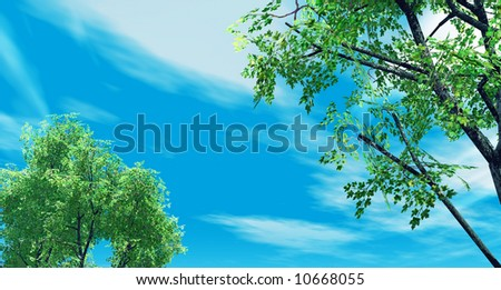 Spring scenery with birch-trees