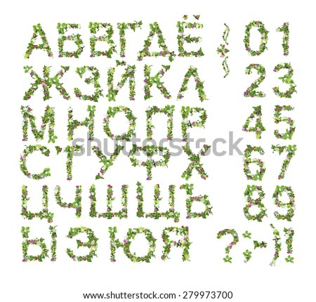Spring Summer alphabet and number made of flower isolated on white background - stock photo