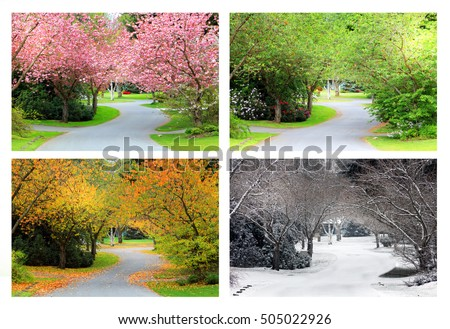 Spring Summer Fall Winter Four Seasons Stock Photo 505022926 Shutterstock